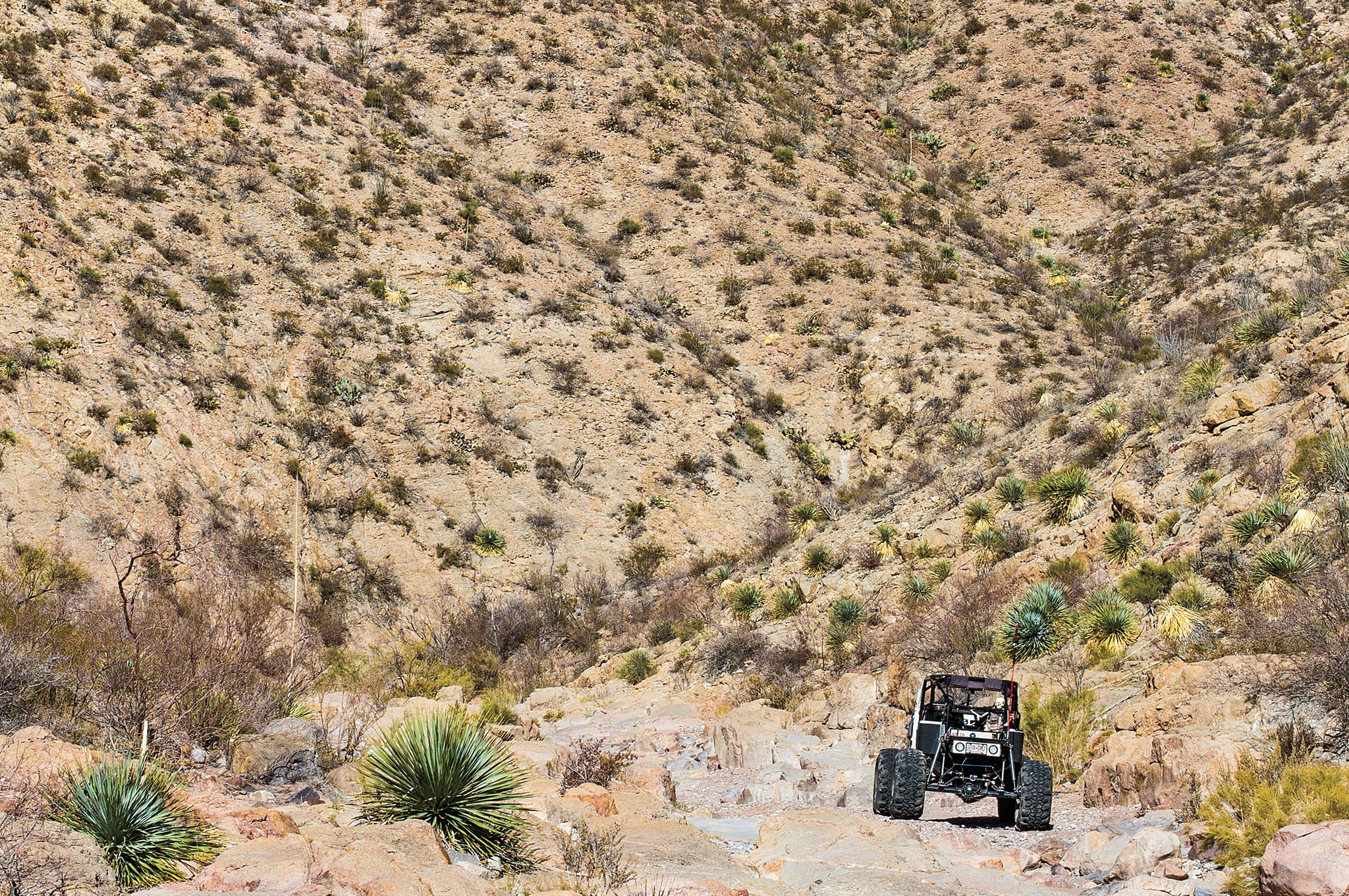 off road jeep new mexico