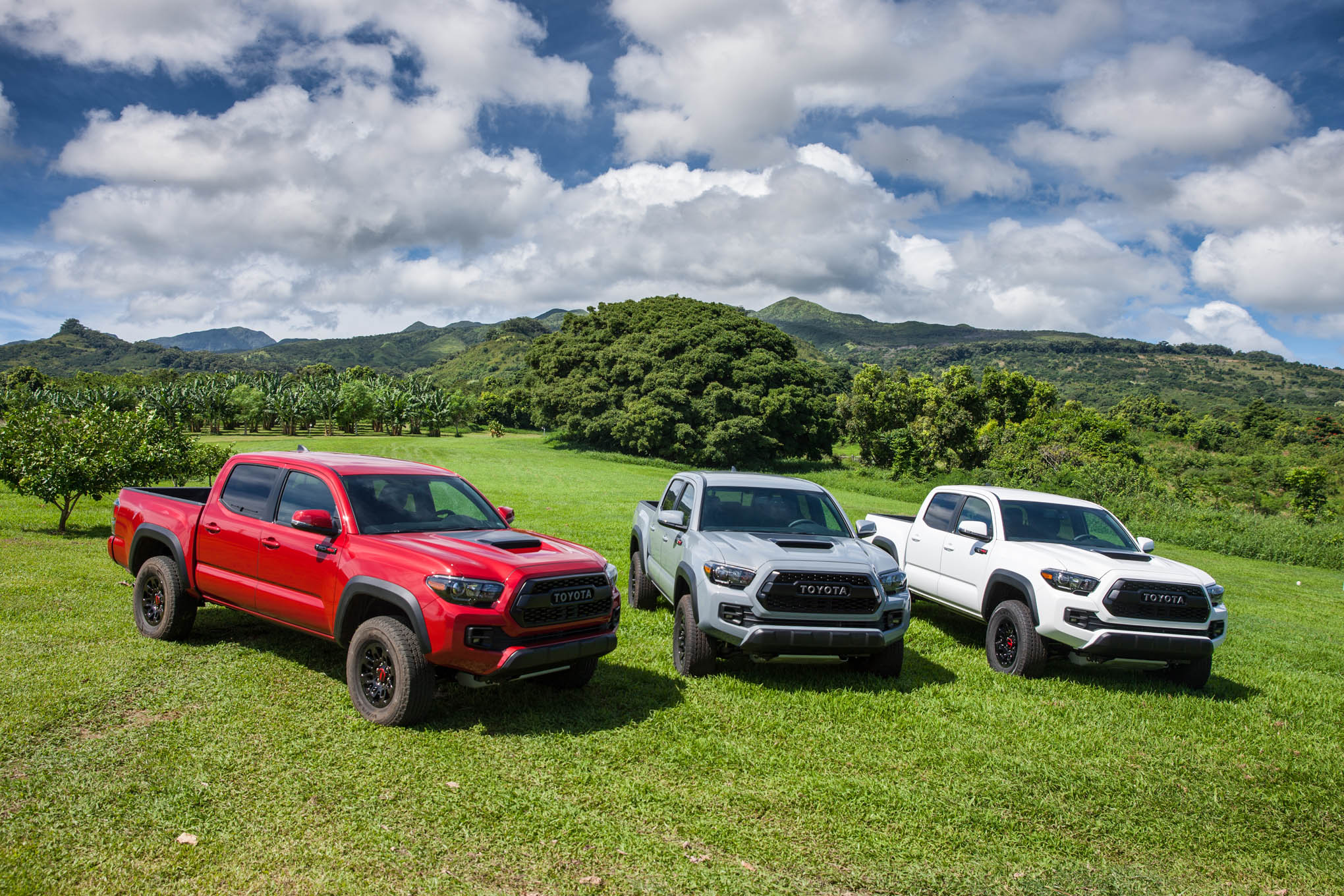 The Tacoma TRD Pro color palate is bold and simple, with three really cool choices to select from: Barcelona Red Metallic, Cement, and Super White. It's one way to really stand out apart from the crowd.