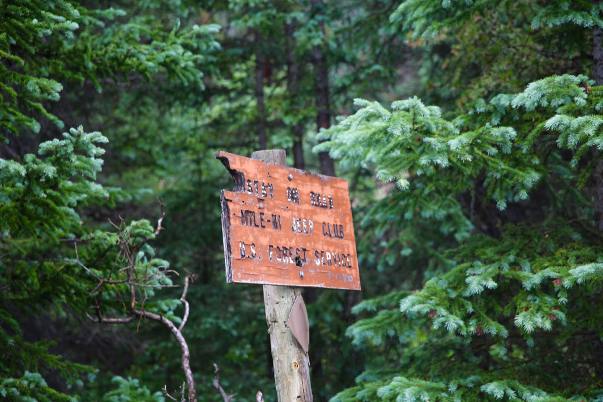 Old Mile-Hi Jeep Club sign as seen on the trail to Red Cone Pass.