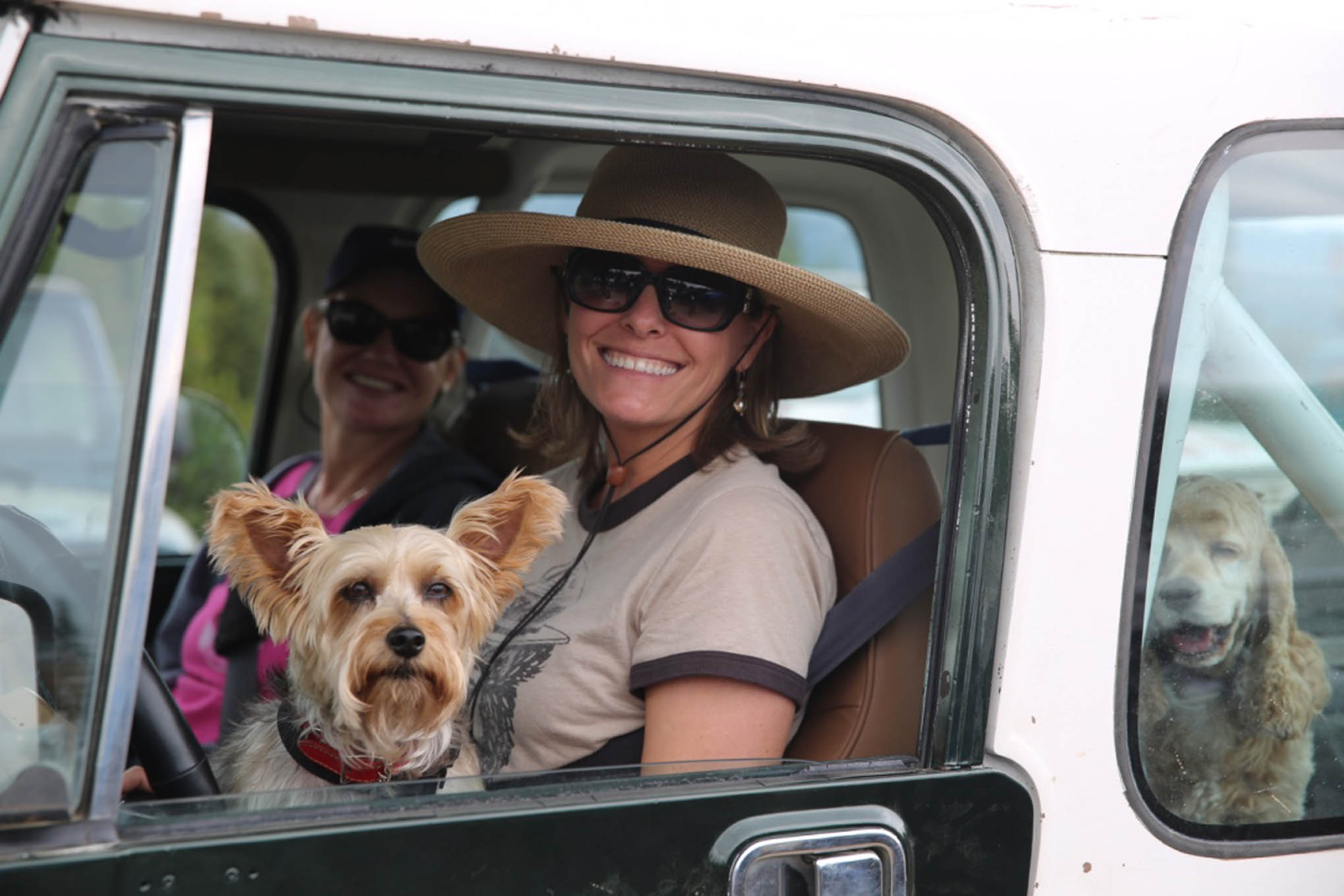Dogs are still a Jeeper's best friend.