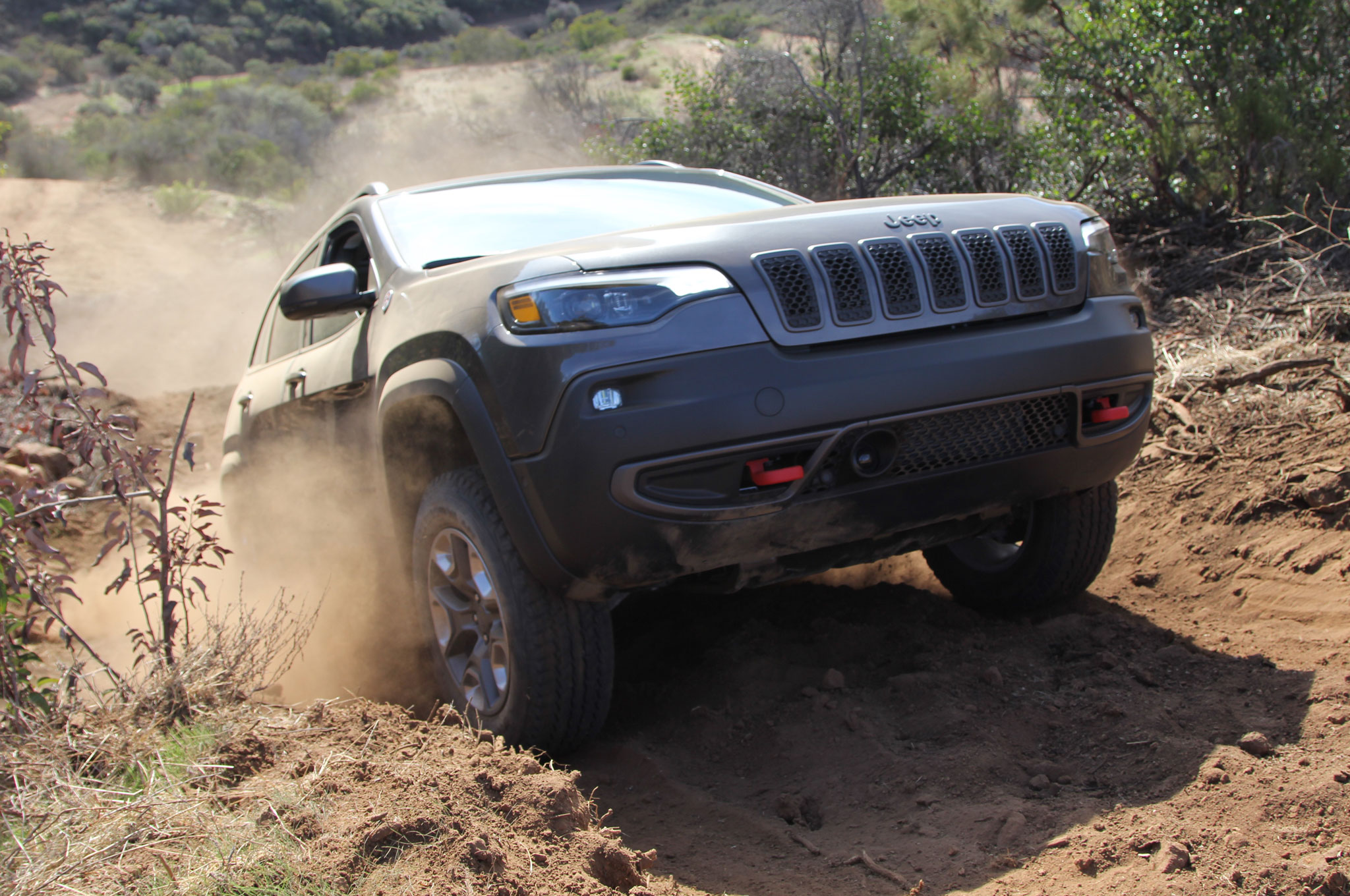 2019 Jeep Cherokee Trailhawk Gray Mike Grasso 25