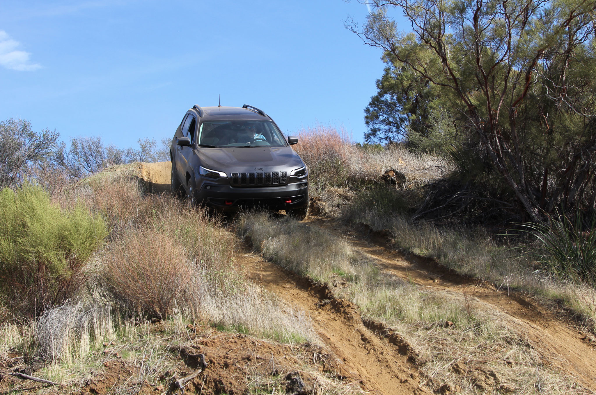 2019 Jeep Cherokee Trailhawk Gray Mike Grasso 40
