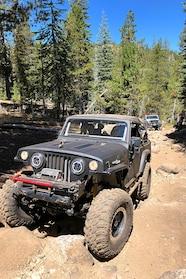 057 jeep shots blake jeepster