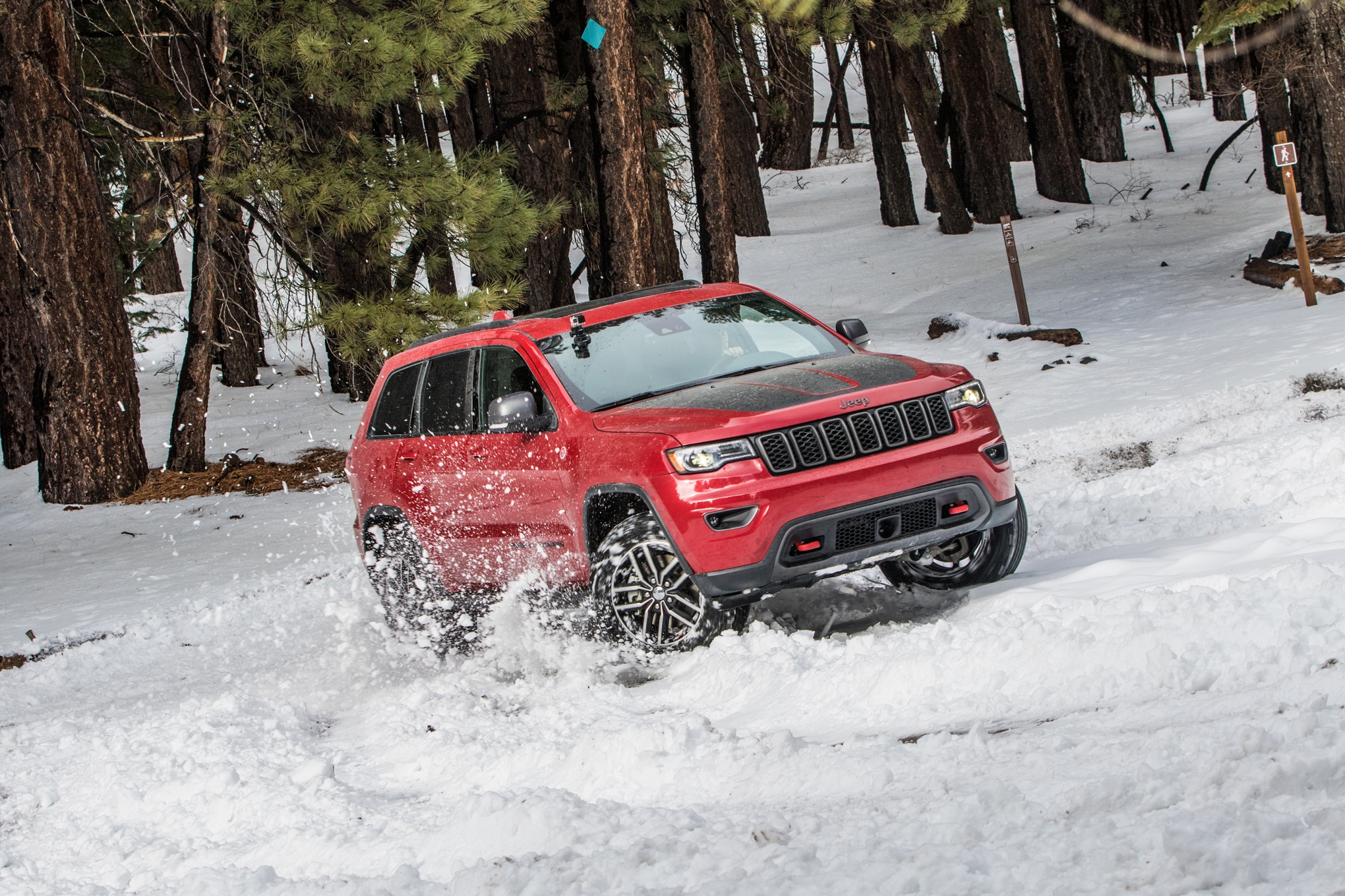 137 suv of the year