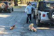 028 sierra trek ram power wagon dogs.JPG