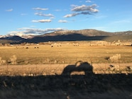 032 Christian Hazel Drives the UACJ6D to Moab Easter Jeep Safari