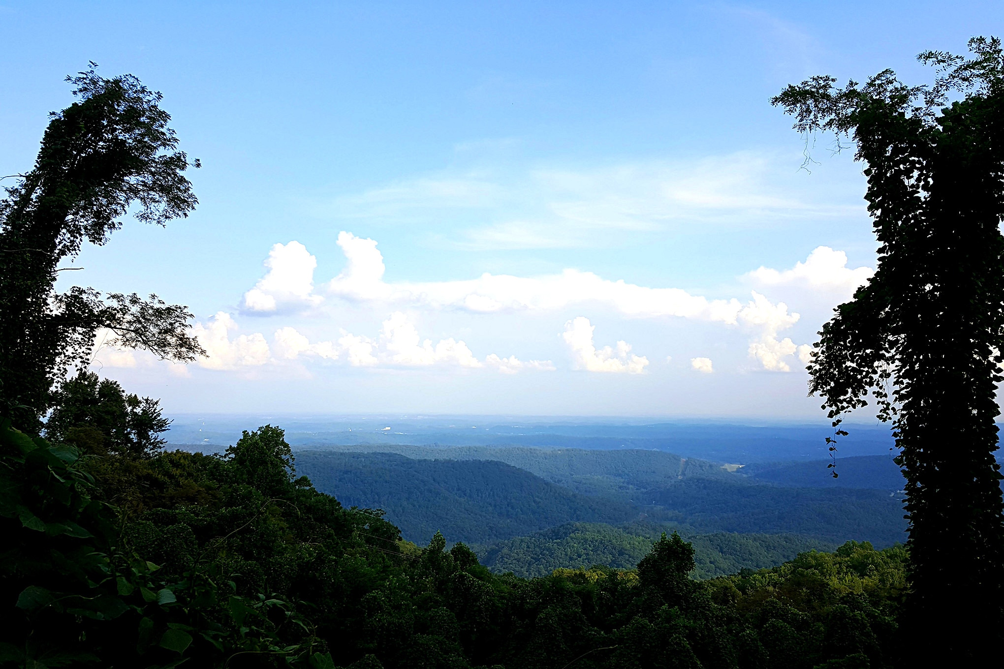 When you reach the main exit road, you are treated to some amazing views of the Appalachian Mountains and the Cumberland Plateau from elevations nearly 3,000 feet above sea level.