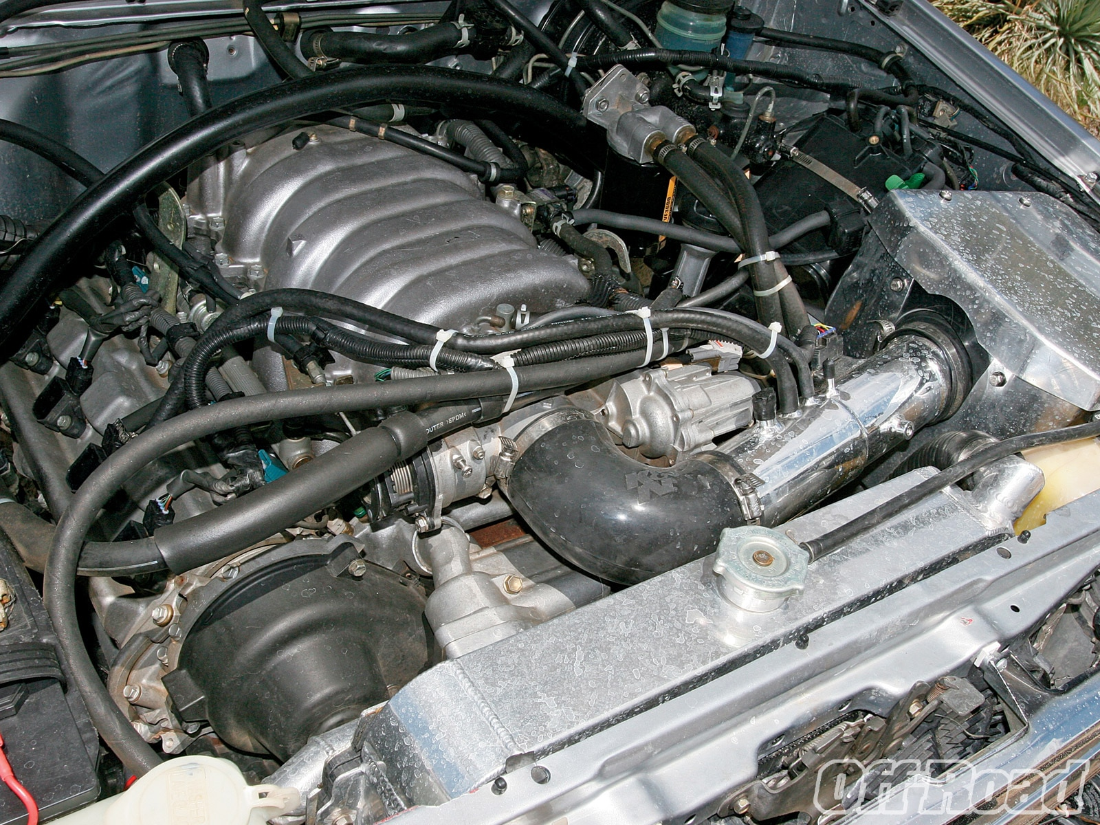 1007or 02 +1989 toyota 4runner+v8 engine