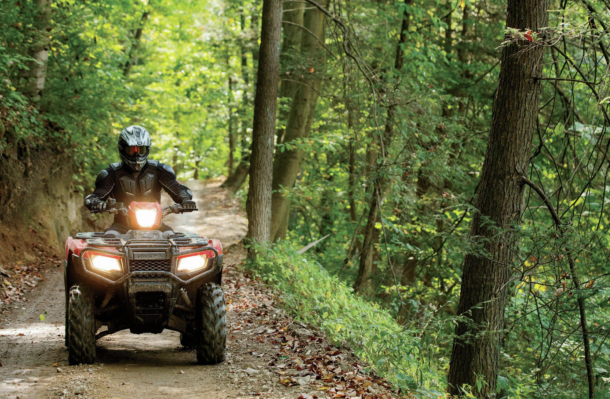 The award-winning Hatfield-McCoy Trails offer something for every skill level. Located in southern West Virginia, there are over 700 miles to explore, including the Ivy Branch—the first 4WD vehicle trail to open in the Mid-Atlantic region.