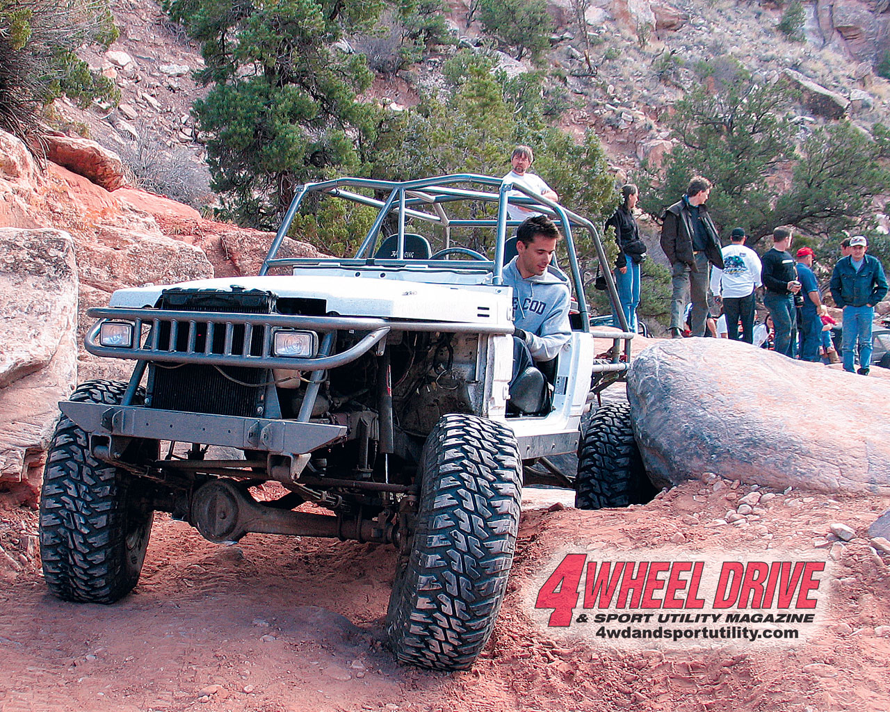 0507 4wd+tube buggy moab+large