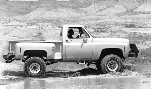 1973 Chevrolet Stepside Passenger Side View