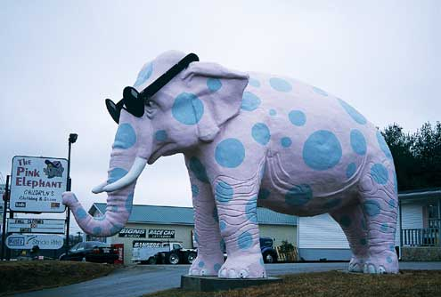A large pink polka-dotted pachyderm. For real!