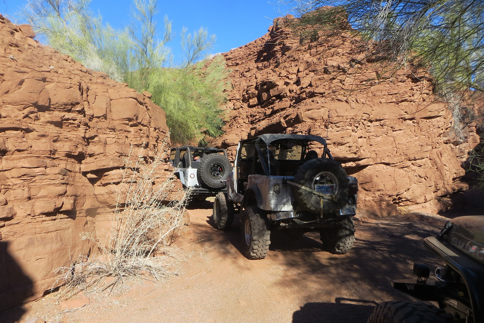 016 2015 desert splash snake bite carnage canyon