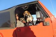 003 2015 desert splash dogs jamboree keno