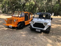 What the Heck Is a Moke? After Finding Two Roaming the Woods, We Now Know